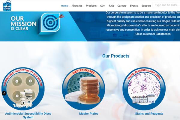 web designing company in Mumbai SYSpree Micormaster