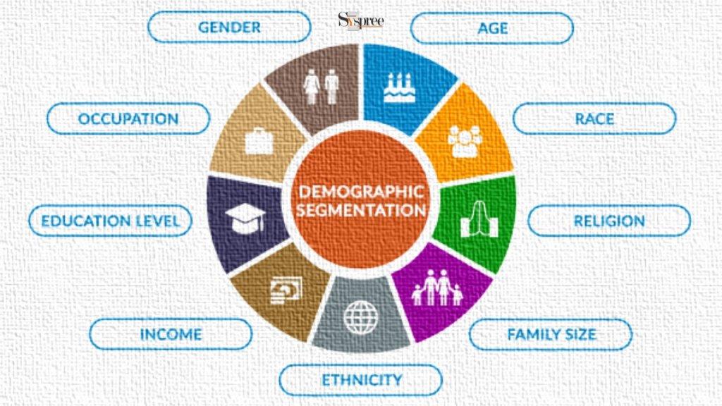 Demographics by Social Media Marketing Company in Mumbai