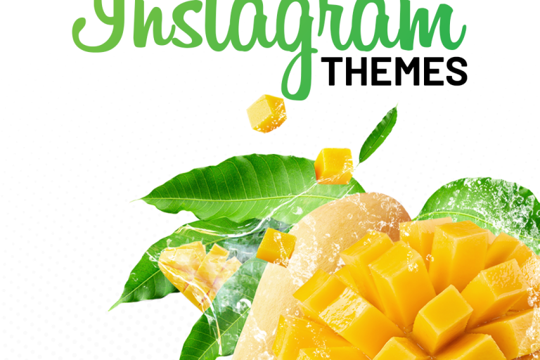 Everything About Instagram Themes by the best digital marketing Agency in India